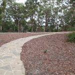 Path through picnic area (225370)