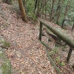 Toomeys Walk (225520)
