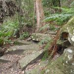 Mossy rocks (225586)