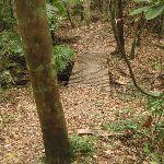 Small bridge on track  (226018)