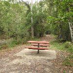 Seymour Pond Picnic Area (226546)