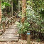 bridge at Seymour Pond (226576)