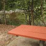 Table at Seymour Pond picnic area (226585)