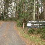 Katandra Reserve entrance at Katandra Rd (226810)