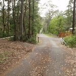 Katandra Rd Picnic area drive way (226822)