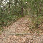 Graves Walk (226981)