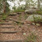 Steps on Graves Walk (227035)