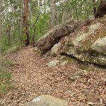 Passing some rocks (227071)