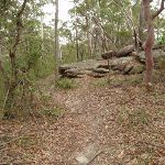 Graves Walk on top of the ridge (227122)