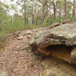 Interesting rock formation on Graves Walk (227125)
