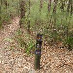 Track marker on Graves Walk (227194)