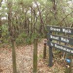 Top of Graves Walk (227281)