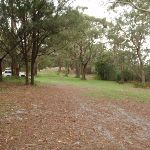 St Johns Picnic Area (227323)