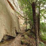 Walking beside the slab on Guringai Walk (227623)