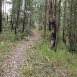 Walking along the ridge (228703)
