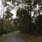 Taylors Rd (north) (230002)