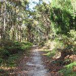 Kanning Walk (233337)