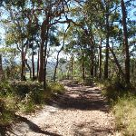 Colin Watters Lookout (234416)