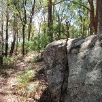 Great boulders scatter the ridge (235463)