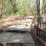 Steps between main picnic area and the overflow car park (238208)
