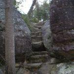Steps on Bungaroo track (24519)