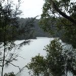 Views over Middle Harbour Creek (24573)