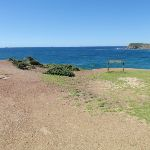 Snapper Point (247546)