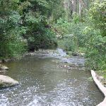 Browns Water Hole (24760)