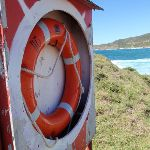 Life Bouy on the western side of Snapper Point (247705)
