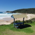 Frazer Beach Picnic Area (248008)
