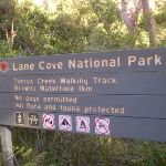 Lane Cove National Park sign beside the track (24886)