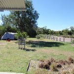 Flat grassy area (250732)