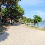 Path behind Shark Bay (251885)