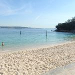 Shark Bay (251900)