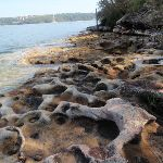 Interesting rock formation beside the Hermitage Foreshore Walk (252998)