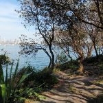 Hermitage Foreshore Walk beside the water (253091)