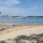 Hermit Bay beach (254069)