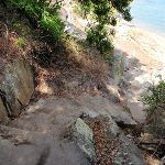 Steps above Queens Beach (254420)