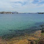 More Harbour Views (254612)