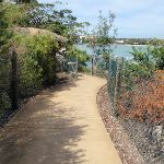 Hermitage Foreshore Walk near  Bayview Hill Rd (254615)