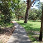 Path leading through Nielsen Park (254924)