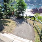 Asphalt walking tracks throughout Cremorne Reserve (258779)