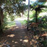 Cremorne Reserve (259088)