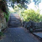 Steps near Cremorne Wharf (259424)