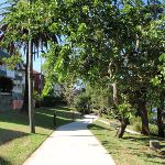 Cremorne Reserve (259571)