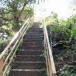 Steps between Milson Park and High St (260663)