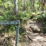 Bottom of Morella Rd Track (261560)