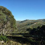 Scenic landscapes (265394)