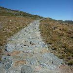 Stone pathway towards the summit of Mt Kosciuszko (266120)