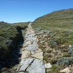 Stone path south of Lake Albina (267185)